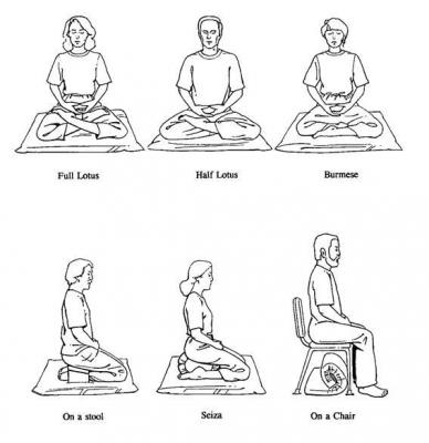Various zazen postures including lotus, half lotus, burmese, seiza, seiza bench and chair